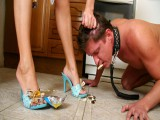 Leashed guy toy cleans the kitchen floor with his tongue and savors his domina's nude feet